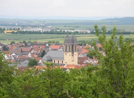 Ockstadt Kirschen